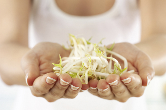 beneficios soja en la menopausia
